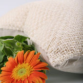 Orange Chrysanthemum and linen pillow — Stock Photo