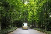 石の通路を走行車 — ストック写真