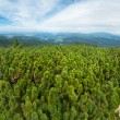 Green mountains panorama - Stock Photo