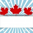 Stock Vector: Canada Day banner.