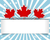 Canada Day banner. — Vector de stock