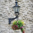 Old lantern with flowers - Foto Stock