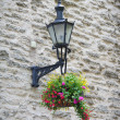 Old lantern with flowers - Stock Photo