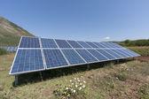 Güneş panelleri — Stok fotoğraf