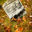 Gravestone — Stock Photo #10773379