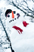 Bonhomme de neige — Photo