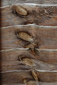 Detail of wooden fence as abstract background — Stock Photo
