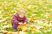 Toddler girl playing in autumn leaves — Stock Photo