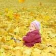 Toddler girl playing with autumn leaves — Stock fotografie