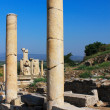The ruins of Ephesus in Turkey — Stock Photo #12206563