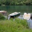 Boats on the river Adda — Stock Photo #11933934