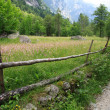 Stock Photo: Val di Mello