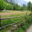 Val di Mello — Stock Photo