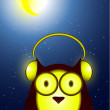 Owl in headphones at night — Stock Vector