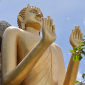 Standing Buddha 09 — Stock Photo