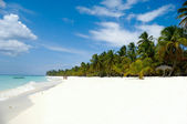 Tropical beach with palm and white sand — Stock Photo