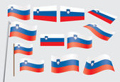 Flag of Slovenia — Stock Vector