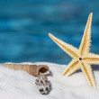 Shells and sea star near water — Stock Photo #10817792