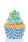 Cupcake in blue and green — Stock Photo