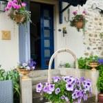 French garden — Stock Photo #11470282
