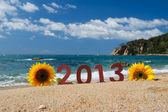 Summer 2013 — Stock Photo