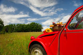 French car with bread and wine — Stock Photo