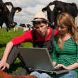 Stock Photo: Young couple farmers in field with cows