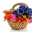Basket colorful flowers — Stock Photo