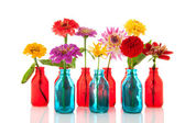 Colorful flowers in bottles — Stock Photo