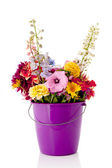 Bucket garden flowers — Stock Photo