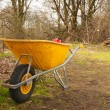 Stock Photo: Wheelbarrow in the forest