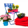 Stock Photo: Gardening in spring