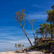 Stock Photo: Baltic Sea coast