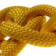 Yellow dagger knot closeup. — Stock Photo #11779503