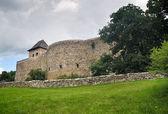 The Castle — Stock Photo