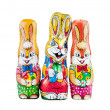 Chocolate bunnies - Photo