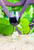 Glass with red wine in vineyard. — Stock Photo