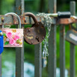 Locks on a bridge protection — Stock Photo