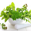 Herbs — Stock Photo #11083843