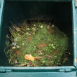 Open composter bin - Stock Photo