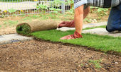 Gardening - laying sod for new lawn — Stock Photo