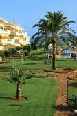 Jardim mediterrânico — Foto Stock