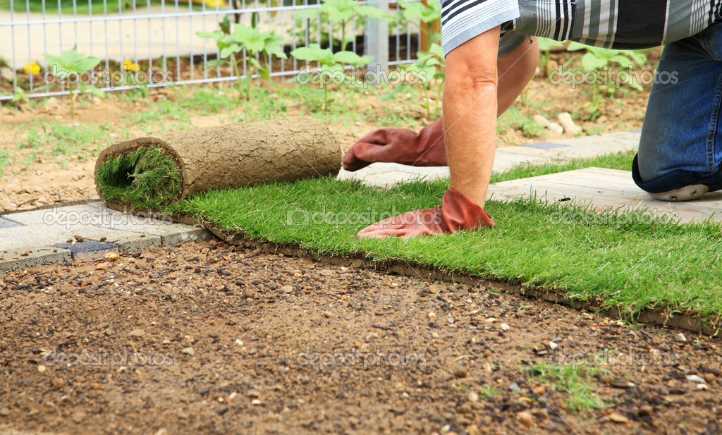 Man laying sod for new garden lawn — Stock Photo #11108353