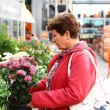 Senior woman in flower shop - Foto Stock