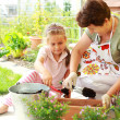 Child helps by replanting - Stock Photo