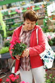 Senior woman in flower shop — Stock Photo