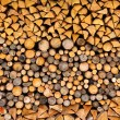 Pile of wood logs ready for winter — Stock Photo #12045027