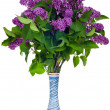 Lilac in a vase - Stock Photo