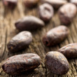 Cocoa beans - Stock Photo