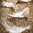 Feather on old wooden desk — Stok fotoğraf